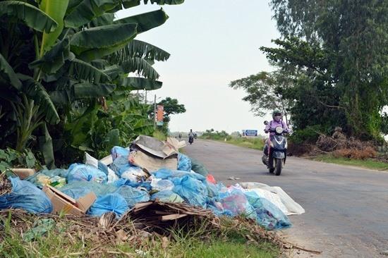 Một đống rác trên đường ĐT608. Ảnh: K.LINH