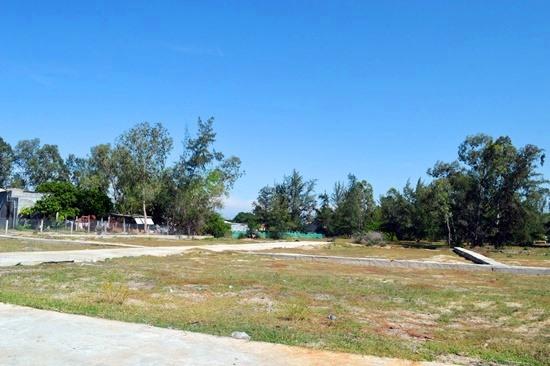 Hơn 4.000m2 đất trồng cây lâu năm được ông Huỳnh Tấn Vỹ và Công ty CP Nhất Thành Nam phân lô bán cho khách hàng. Ảnh: VĨNH LỘC