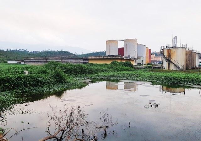UBND tỉnh yêu cầu nhanh chóng khắc phục sự cố tại Nhà máy cồn Đại Tân. Ảnh: HOÀNG LIÊN
