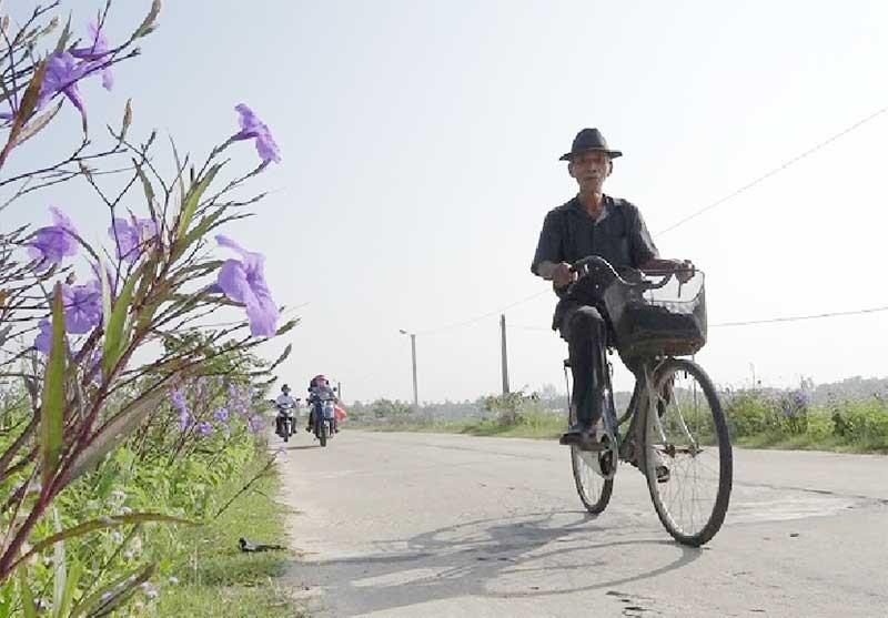 Bộ mặt làng quê thôn Liễu Thạnh khởi sắc khi xây dựng khu dân cư nông thôn mới kiểu mẫu. Ảnh: BIÊN TÂN