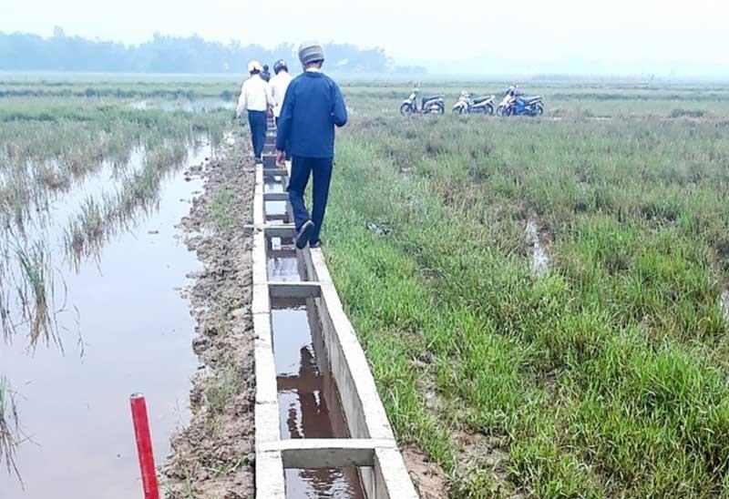 Nhiều tuyến kênh mương nội đồng ở xã Quế Xuân 2 (Quế Sơn) vừa được đầu tư thi công hoàn thành. Ảnh: V.SỰ