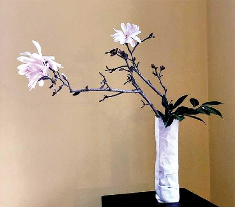 Các sản phẩm sắc màu gốm lấy cảm hứng từ nguyên liệu và câu chuyện địa phương Cẩm Thanh, Hội An.