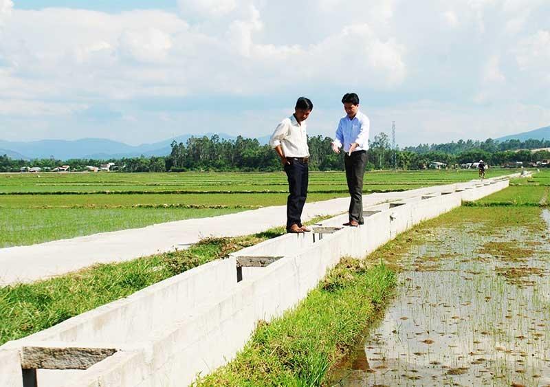 Thời gian qua, việc huy động nguồn lực tài chính từ các doanh nghiệp trong việc xây dựng hạ tầng phục vụ sản xuất trên các cánh đồng mẫu lớn gặp nhiều khó khăn. Ảnh: A.S
