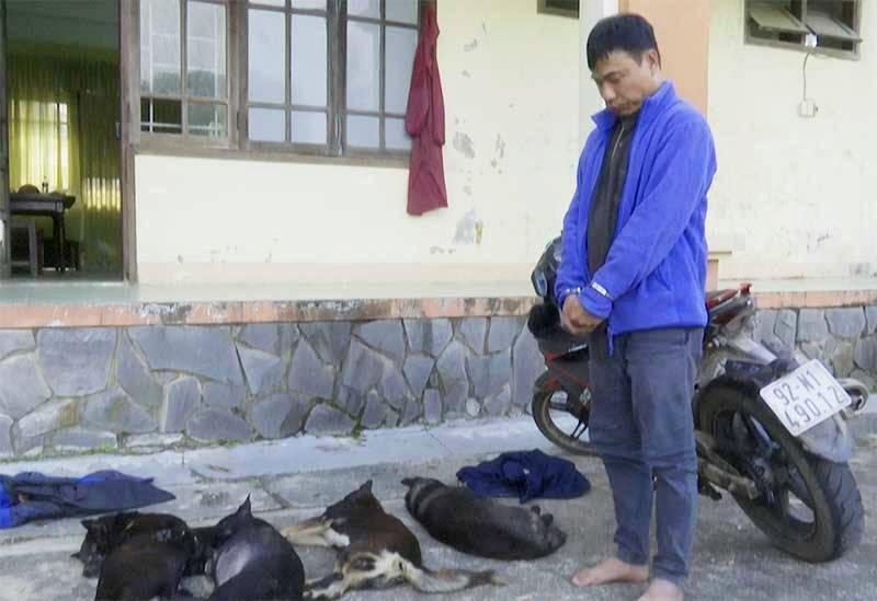 Đối tượng cùng tang vật là 4 con chó đã chết. Ảnh: T.Q