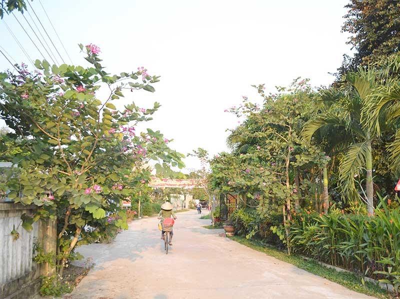"""GTNT được kiên cố hóa, người dân có điều kiện trồng cây, hoa cảnh để thực hiện """"Khu dân cư NTM kiểu mẫu"""". Ảnh: C.T"""