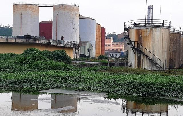 Nhà máy cồn Đại Tân. Ảnh: HOÀNG LIÊN