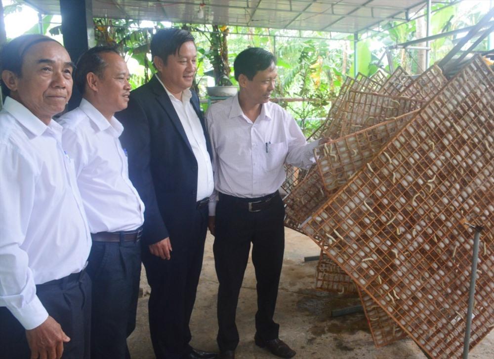 Đại biểu tham quan mô hình nuôi tằm của hộ dân ở thôn Bến Đền Tây, xã Điện Quang. Ảnh: Q.T