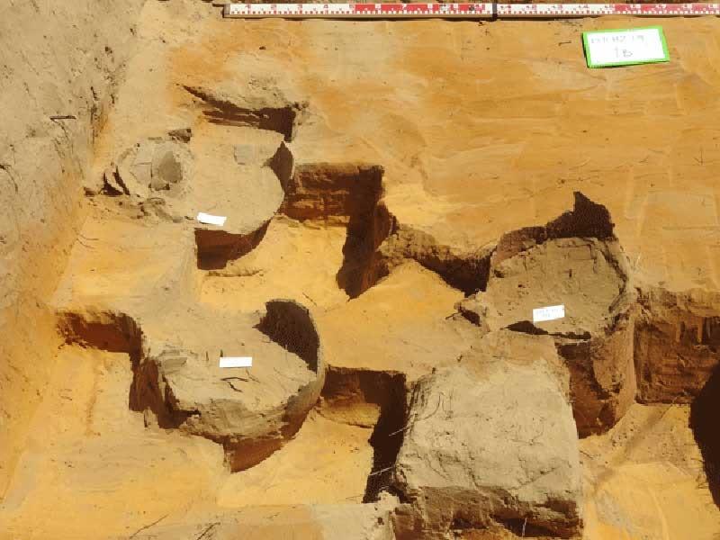 Các mộ chum được phát hiện.