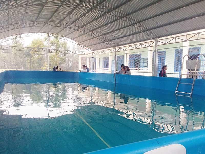 Hồ bơi lắp ghép tại Trường TH Đoàn Bường, xã Bình Triều. Anh: BIÊN THỰC