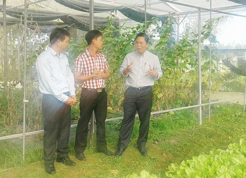 Chủ tịch UBND tỉnh Lê Trí Thanh kiểm tra mô hình sản xuất của HTX Nông nghiệp công nghệ cao Trường Thành (xã Tam Thành, Phú Ninh). Ảnh: VĂN SỰ