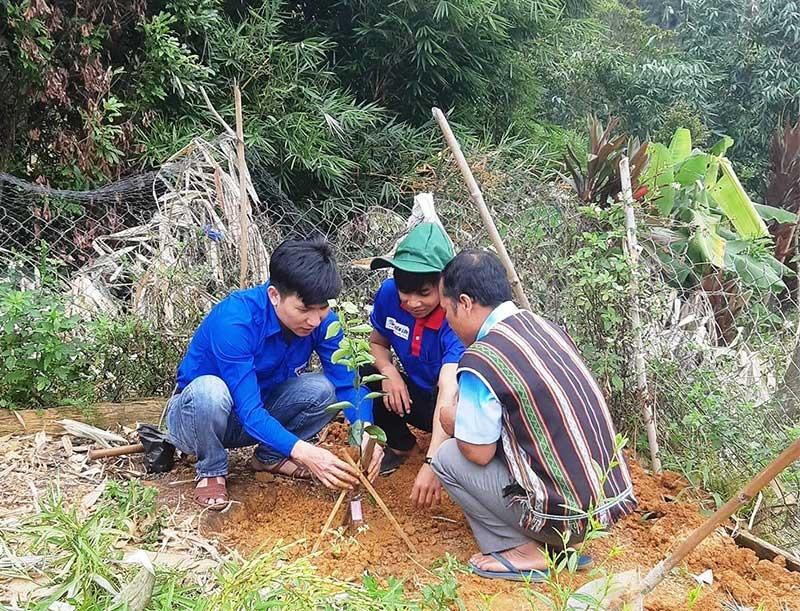 Đoàn viên, thanh niên Trường Cao đẳng KT-KT Quảng Nam hướng dẫn kỹ thuật trồng cây ăn quả cho người dân vùng cao.