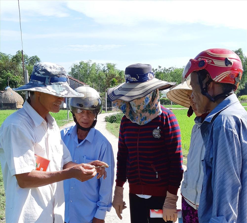 Cán bộ kỹ thuật cùng nông dân quan sát hệ sinh thái đồng ruộng. Ảnh: M.T