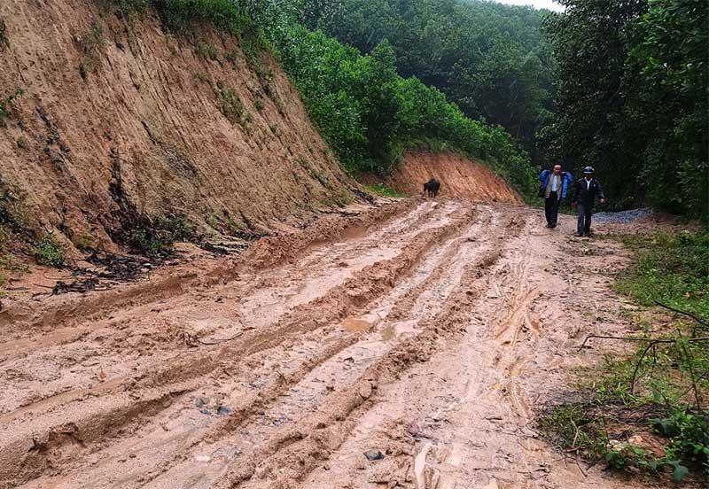 Tuyến ĐH10 sắp tới sẽ không còn lầy lội khi được hội viên CCB cùng người dân thôn 3 và thôn 1 xã Tiên Ngọc hiến đất, cây trồng để mở rộng và chuẩn bị bê tông hóa. Ảnh: N.H