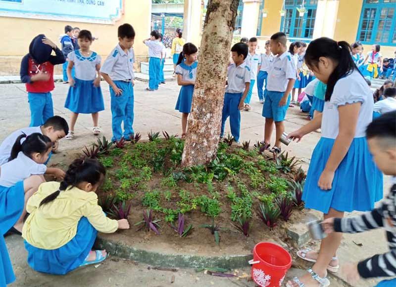 Học sinh trồng và chăm sóc hoa trong trường học. Ảnh: C.N