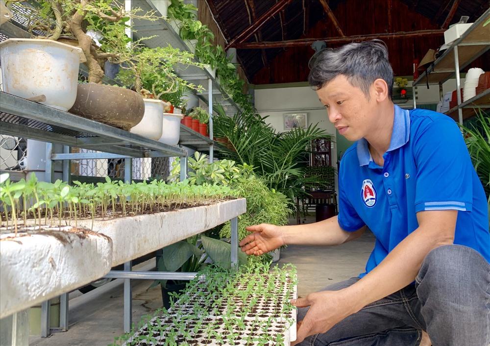 Anh Tiền chủ động ươm các giống hoa sau khi đầu tư nhà lưới. Ảnh: PHAN VINH