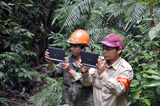 Forest management via tablets in the Green Annamites project