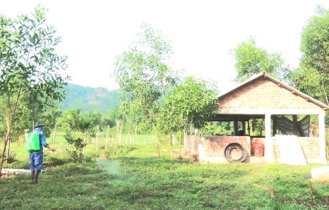 Các địa phương trên địa bàn tỉnh thực hiện tiêu độc khử trùng khoanh vùng ổ DTHCP. Ảnh: N.Đ