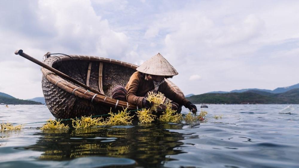 The rural life in Hoi An (Photo: CNN)