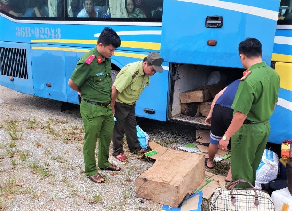 Lực lượng chức năng phát hiện 11 hộp gỗ không rõ nguồn gốc trên xe khách. Ảnh: T.B