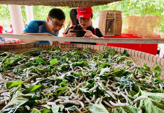 Không gian trưng bày nghề nuôi tằm truyền thống ở làng Đại Bình. Ảnh: PHAN VINH