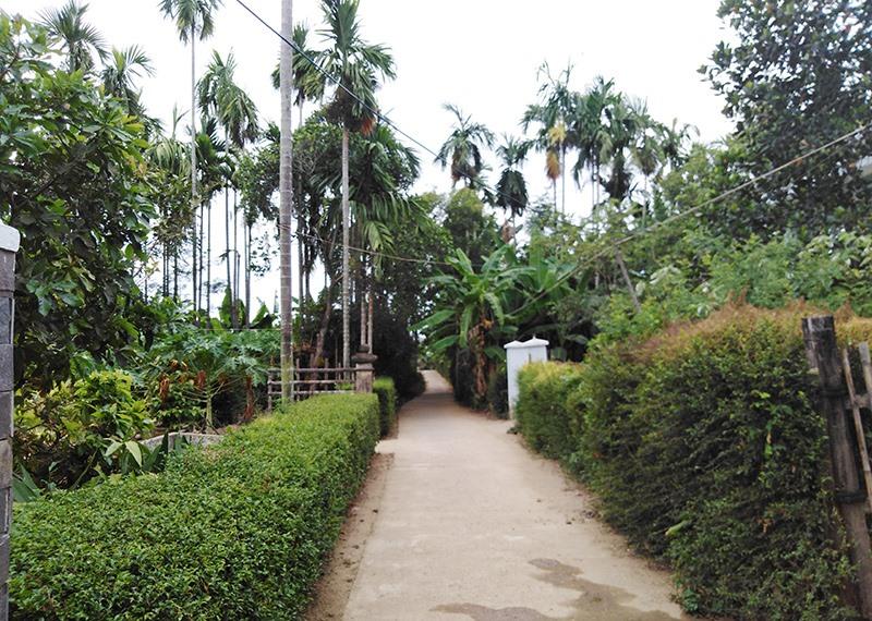 Một góc thôn Trung Hà, xã Cẩm Kim. Ảnh: Q.L