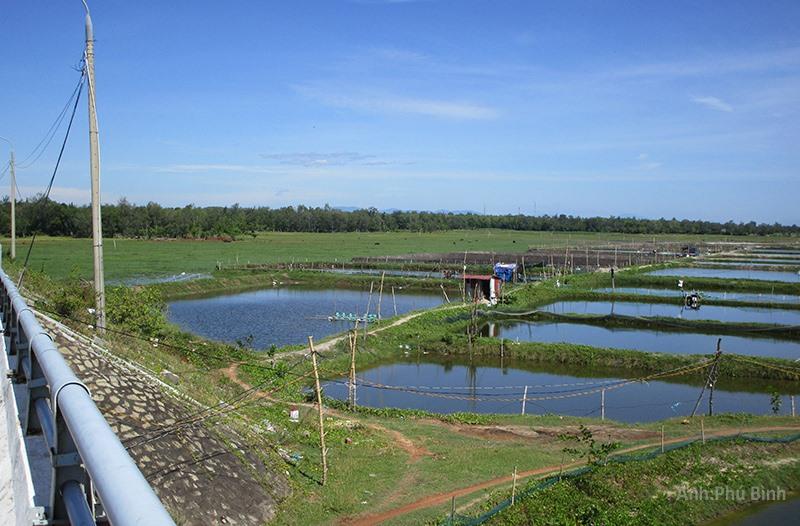 Làng Phú Quý Hạ xưa (ảnh chụp từ chân cầu Tam Thanh). Ảnh: PHÚ BÌNH