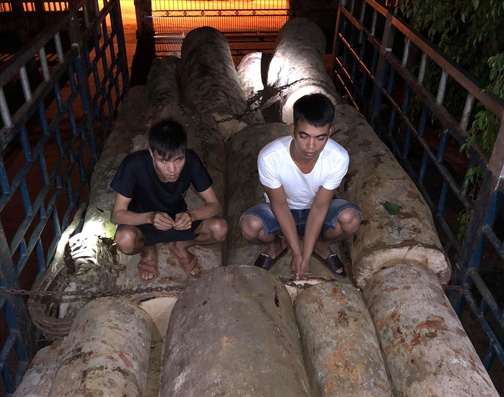 Nguyễn Văn Tâm (áo đen) là đối tượng chặt phá rừng rồi thuê người vận chuyển đi tiêu thụ. Ảnh: THANH THẮNG