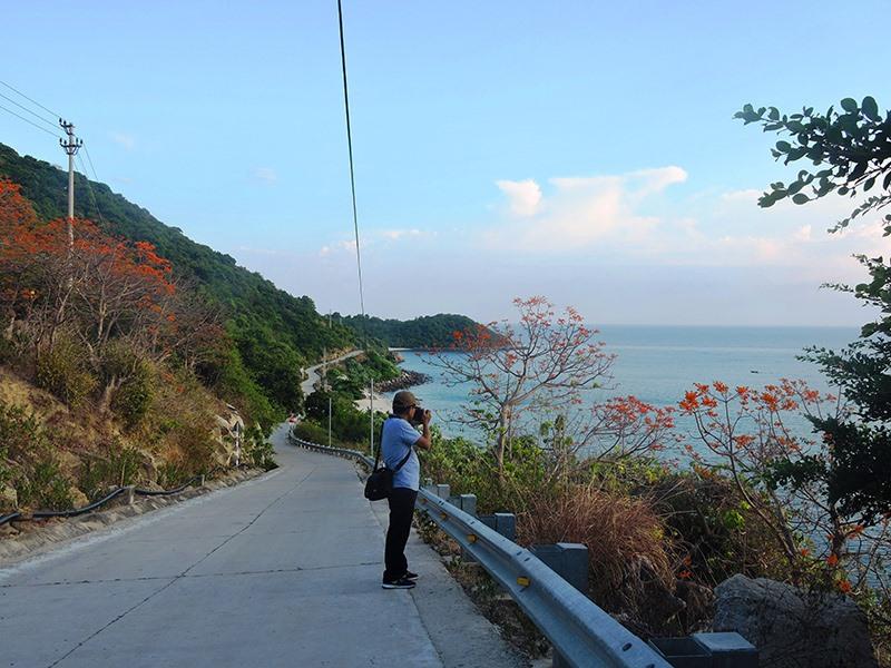 Nhiều du khách không bỏ qua cơ hội lang thang trên Hòn Lao để khám phá nét đẹp hoa ngô đồng - trải nghiệm không thể bỏ qua tại Cù Lao Chàm..