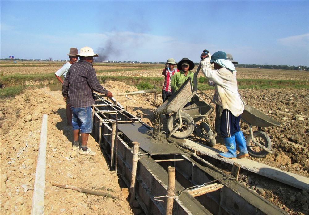 Quảng Nam đã tập trung nhiều nguồn lực để xây dựng hệ thống hạ tầng phục vụ sản xuất nông nghiệp. Ảnh: V.S