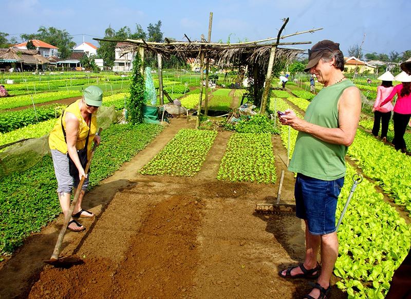 Du khách trải nghiệm trồng rau ở Trà Quế (Hội An). Ảnh: PHƯƠNG THẢO
