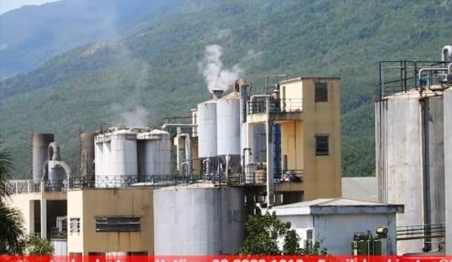 Nhà máy cồn Đại Tân bị sự cố về môi trường. Ảnh: T.N