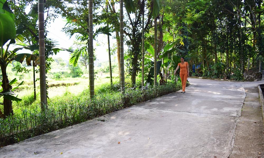 Tuyến đường phụ nữ tự quản sáng - xanh - sạch - đẹp tại tổ 27. Ảnh: THÁI CƯỜNG