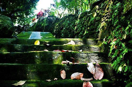 Ngõ đá tại làng Lộc Yên. Ảnh: PHƯƠNG THẢO