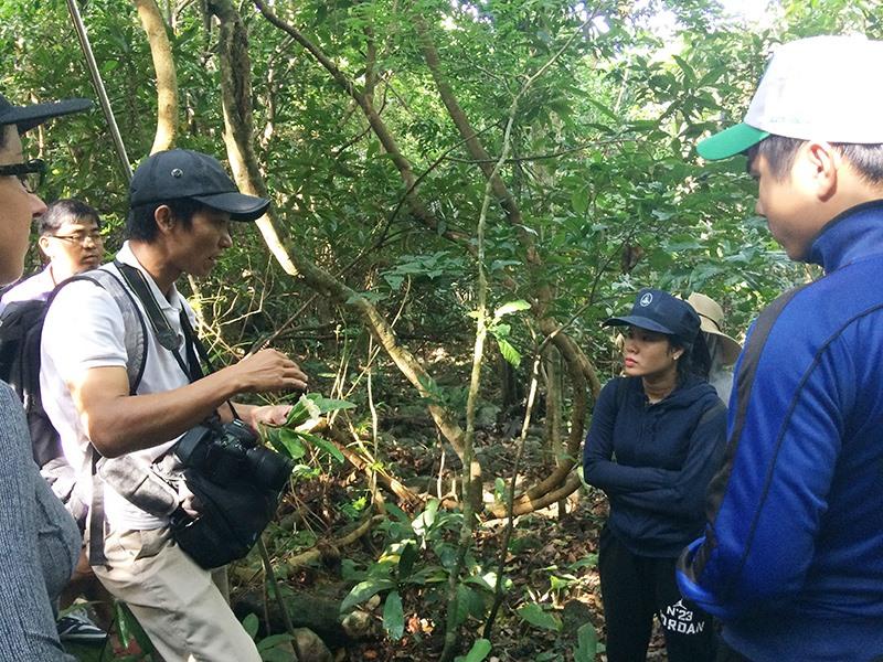 Hệ sinh thái rừng Cù Lao Chàm sở hữu nhiều loài sinh vật đặc hữu và có giá trị cần được bảo tồn. Ảnh: Q.T