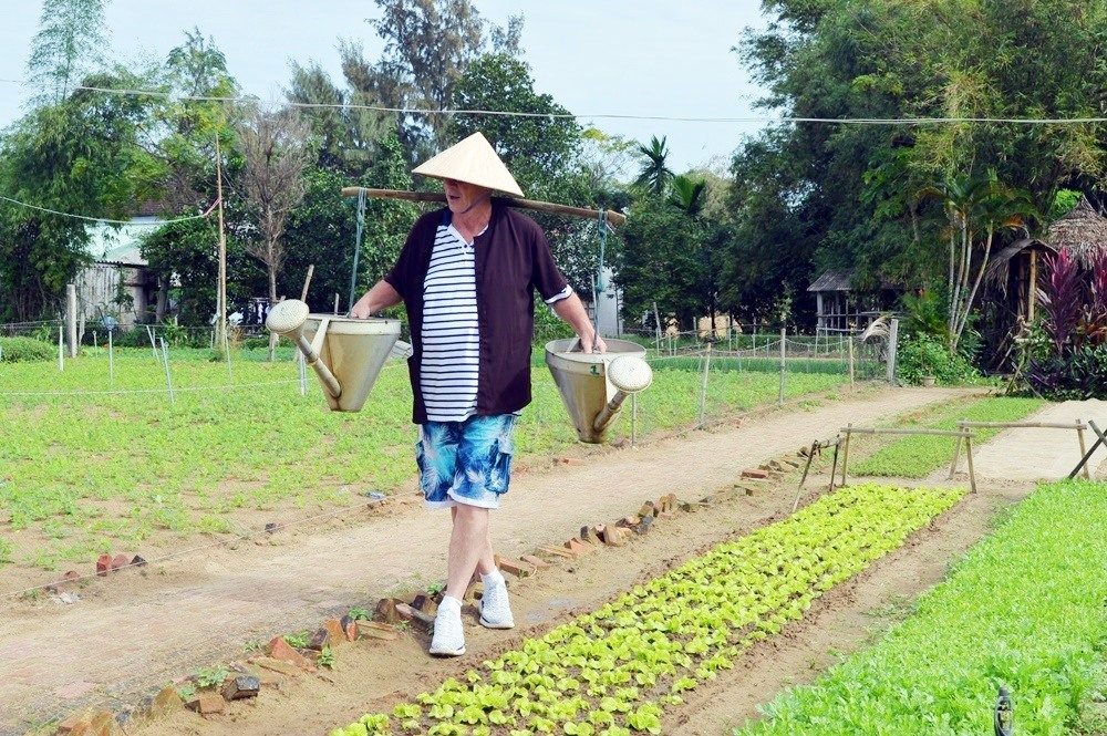 Tham quan Trà Quế khách sẽ được trải nghiệm các hoạt động trồng rau và chăm sóc rau