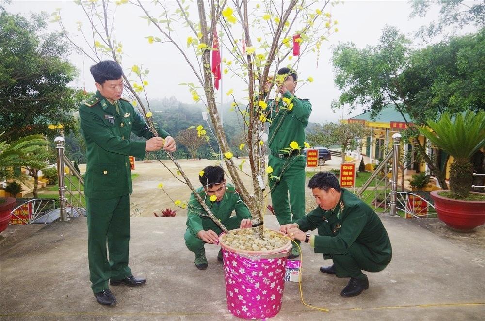 Những cành đào núi khoe sắc được các chiến sĩ Đồn Biên phòng Ga Ry đưa về trang trí cho đơn vị thêm sắc xuân.
