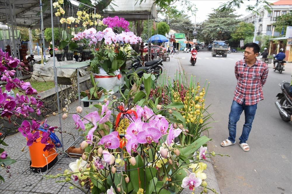 Một điểm bày bán hoa lan tại TP.Hội An cũng thu hút nhiều người đến xem và mua hoa. Ảnh: THANH THẮNG