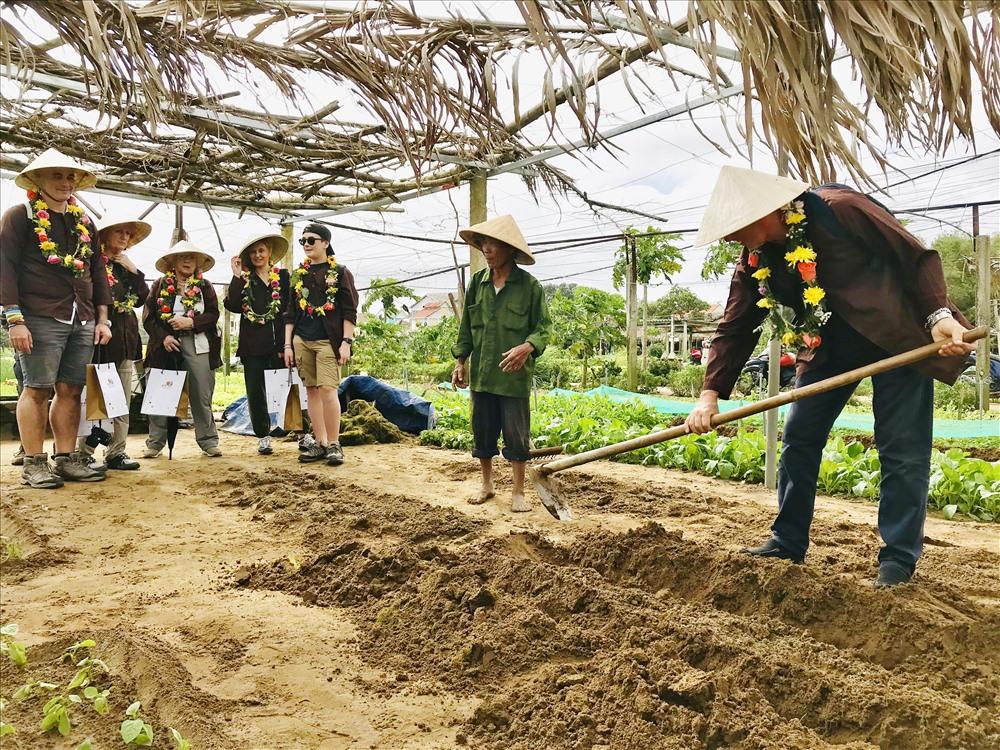 Đoàn khách đến từ nước Ý trải nghiệm làm nông dân tại làng rau Trà Quế xã Cẩm Châu, TP.Hội An. Ảnh: T.L