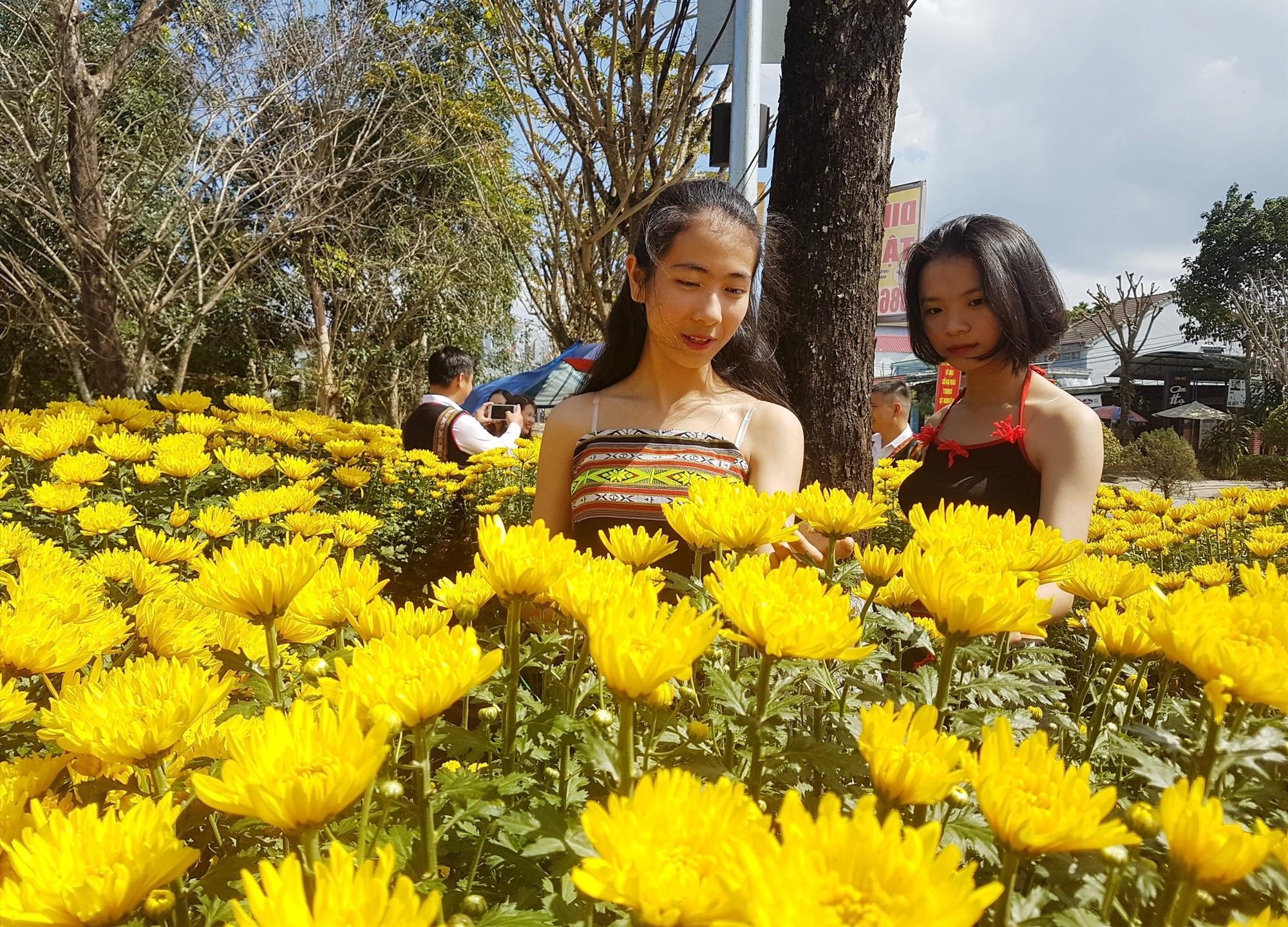 Thiếu nữ khoe sắc cùng hoa xuân. Ảnh: D.L