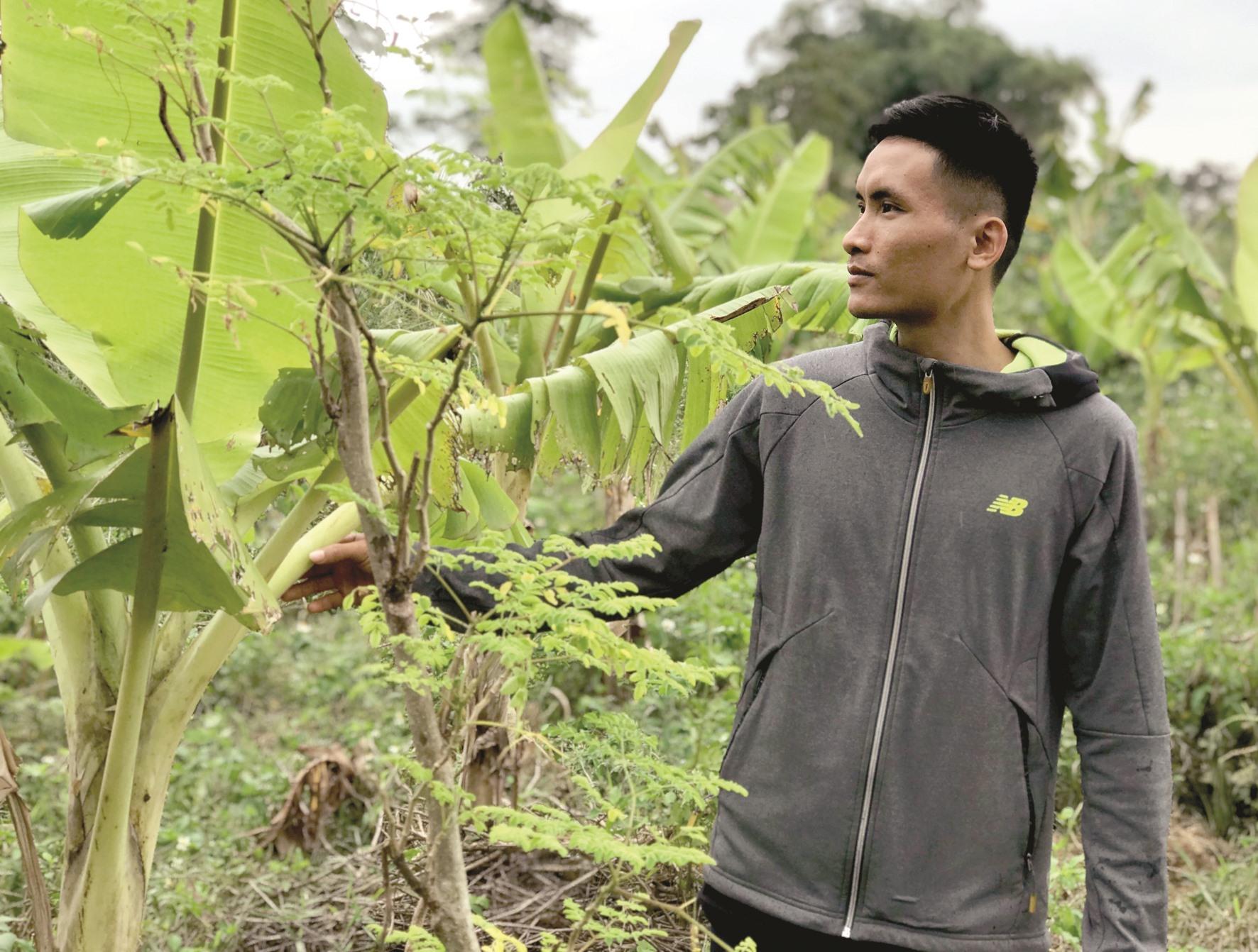 Nguyễn Đăng Nhật - chàng kỹ sư làm vườn rừng. Ảnh: HIỀN TUẤN