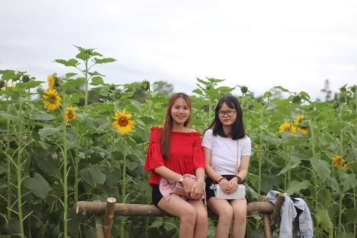 Bạn trẻ chụp hình lưu niệm tại vườn hoa.