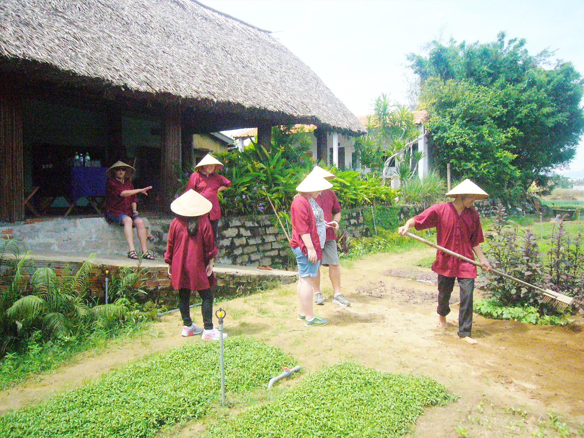 Du khách trải nghiệm vun luống trồng rau ở Trà Quế. Ảnh: Đ.H