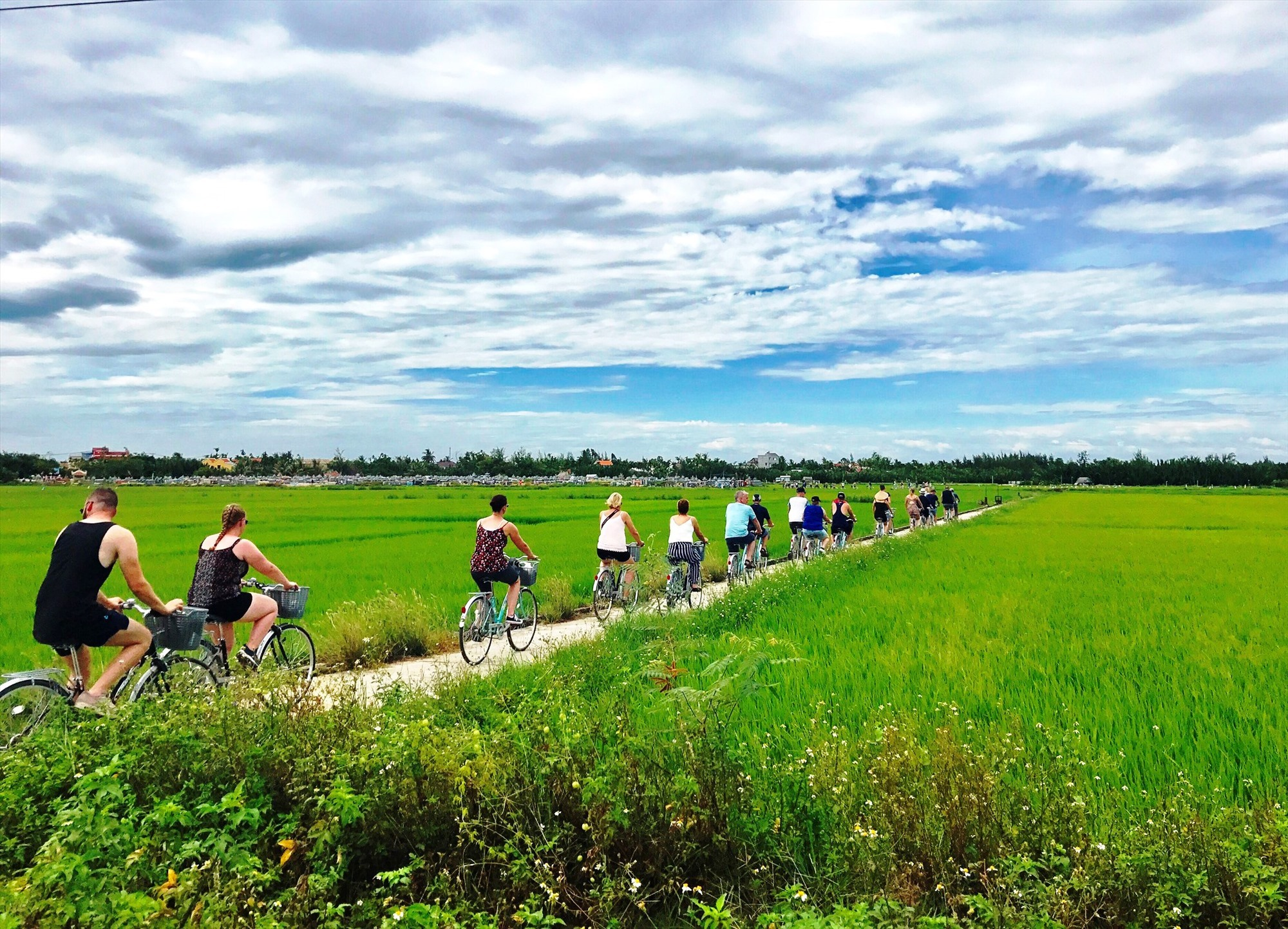 Foreign tourists explore the countryside in Hoi An by bike.