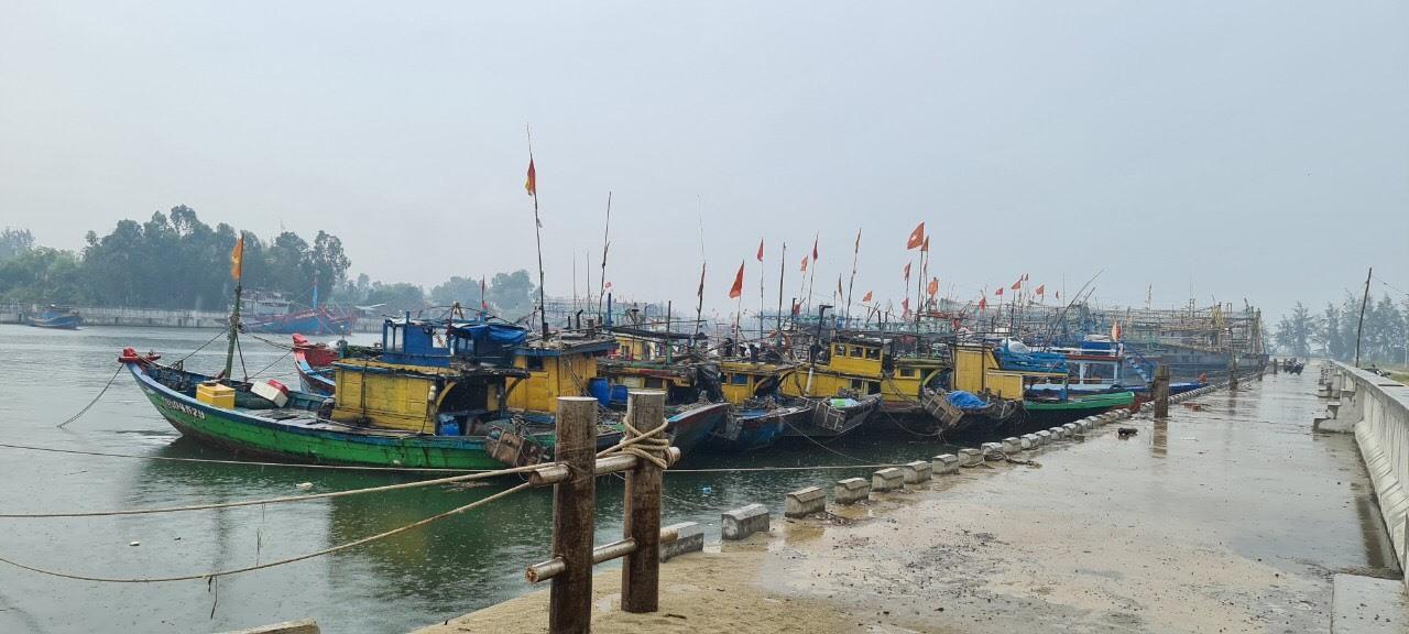 Ngư dân được yêu cầu lên bờ sơ tán, tuyệt đối không ở lại trên tàu thuyền khi bão số 9 đổ bộ. Ảnh: T.C