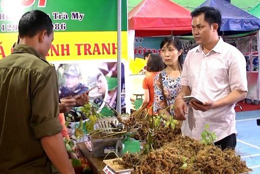 A Ngoc Linh ginseng fair