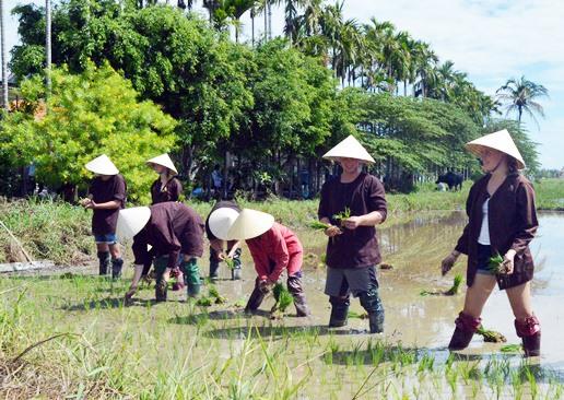 Du lịch nông nghiệp, nông thôn cần được đầu tư để thu hút khách du lịch, cải thiện sinh kế cộng đồng. Ảnh: T.L