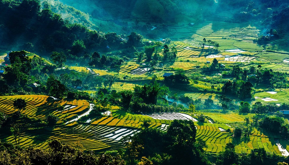 Terraced fields in the west part of Quang Nam province