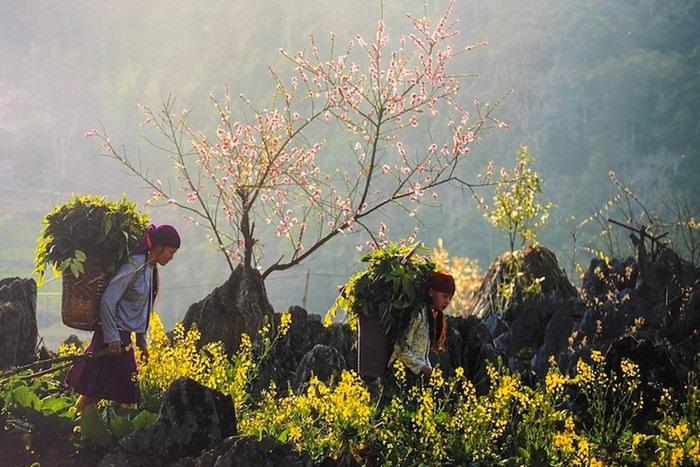 Ha Giang on spring