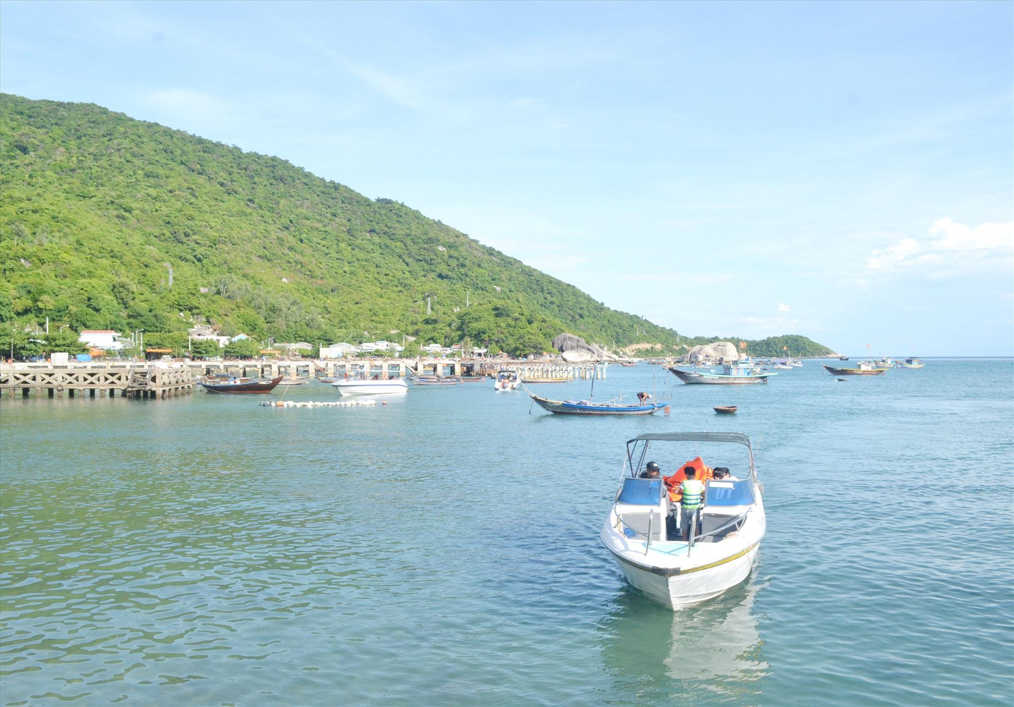 Bảo tồn biển Cù Lao Chàm thu được nhiều kết quả khả quan. Ảnh: VIỆT NGUYỄN