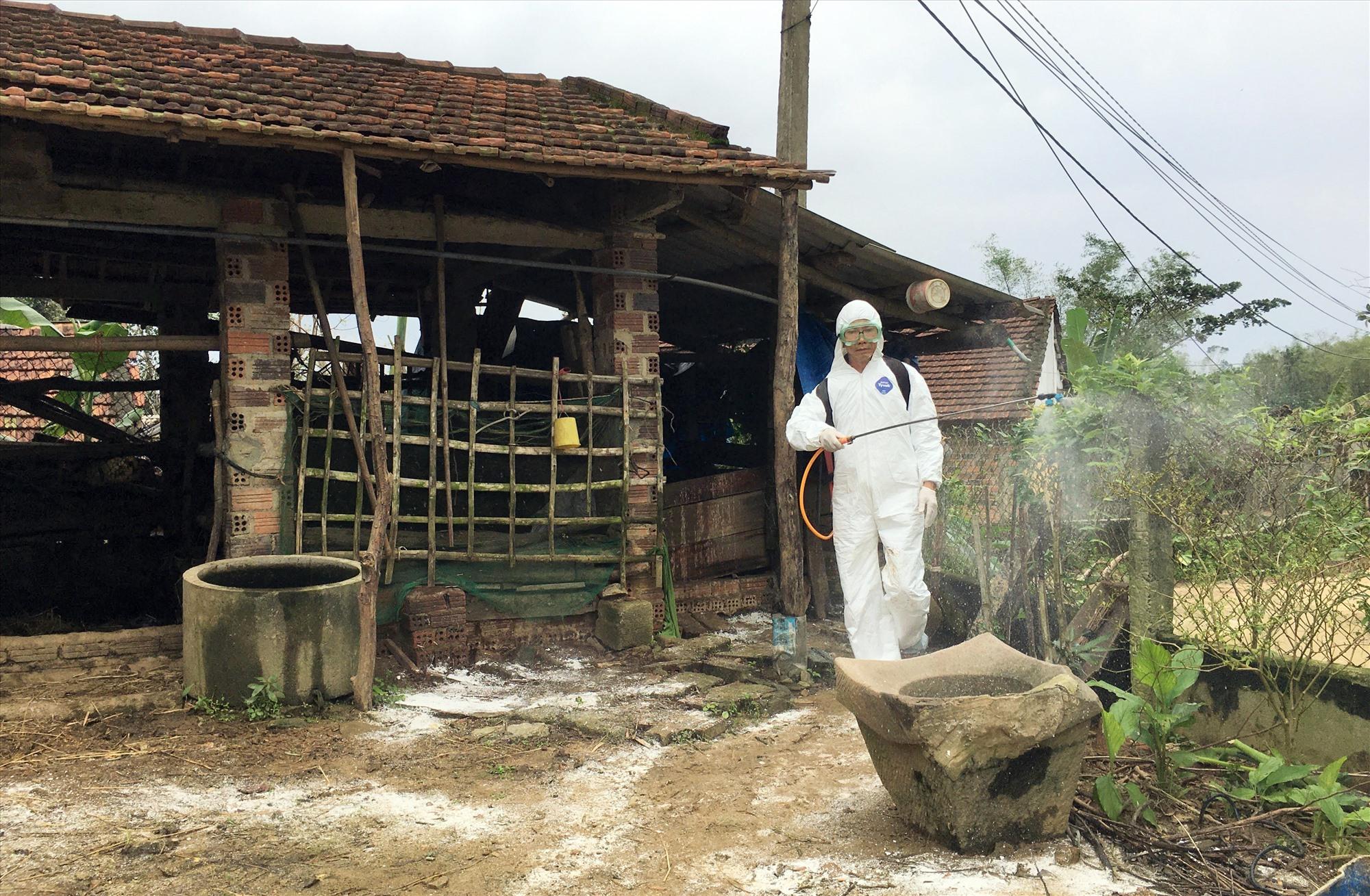 Lực lượng chức năng huyện Phú Ninh phun tiêu độc khử trùng phòng chống dịch bệnh trên đàn gia súc, gia cầm. Ảnh: HẢI CHÂU